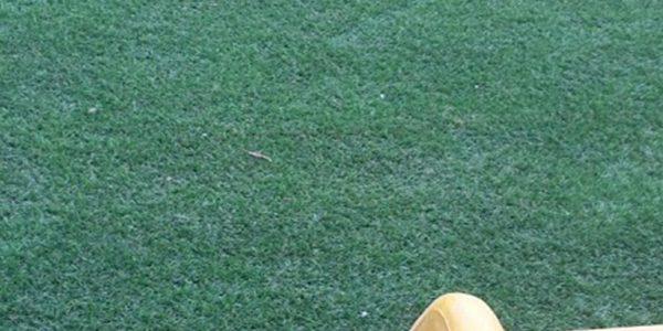 30 mm çim halı